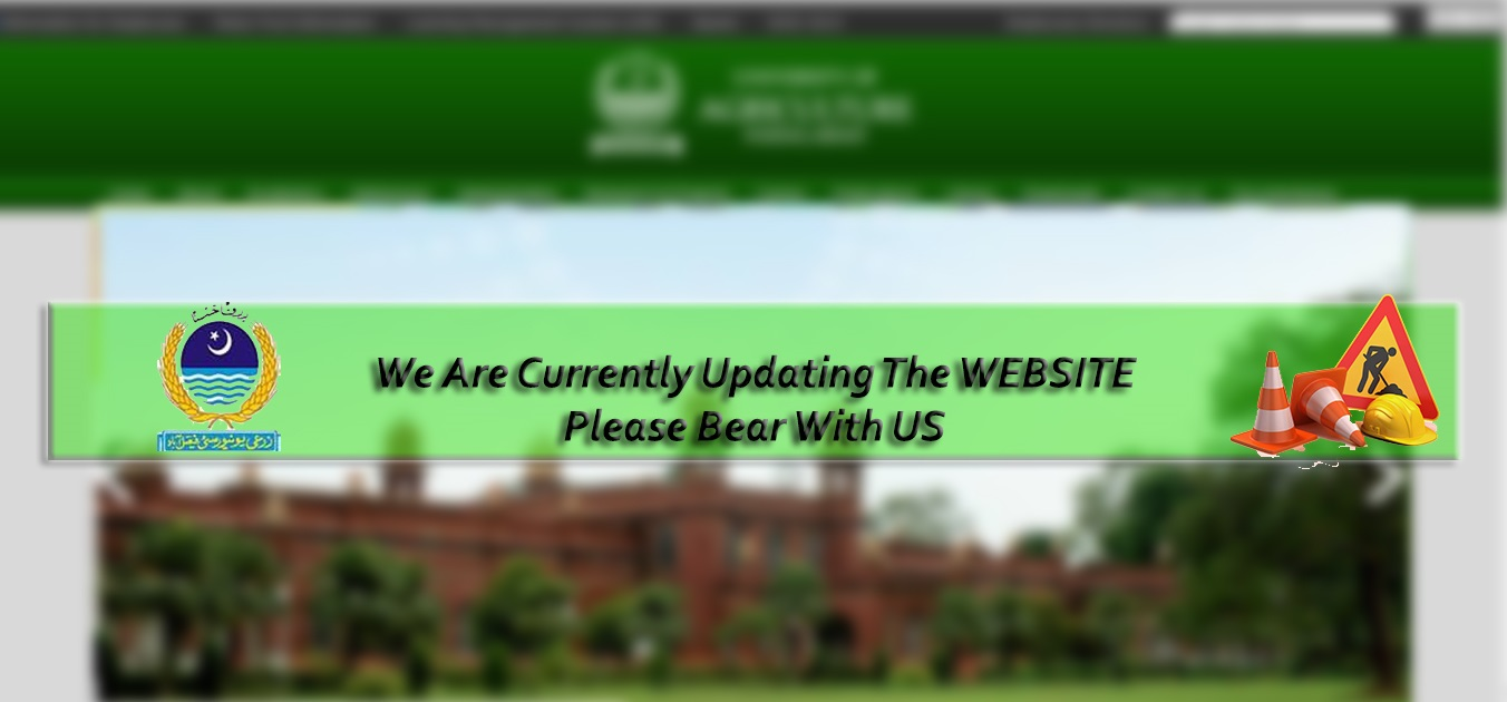 We are Updating the website. Please Bear with US.